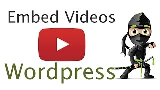 видео jce for wordpress