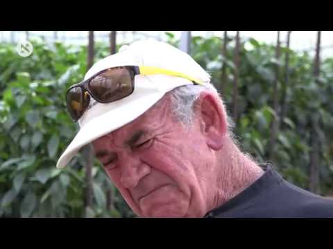 הדור האחרון של החקלאים בישראל