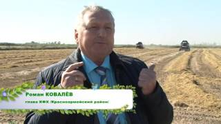 Фермер Роман Ковалев - лучший рисовод Кубани