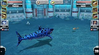 MEGALODON VS HYBODUS - Jurassic Park Builder Aquatic Tournament Android Gameplay HD