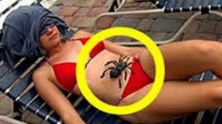 ADULT 18+ VIDEO / FAILED MOVIES - SPIDER LIVE ON EAR - BECAREFULL!!!! DONT LOOK!!!!