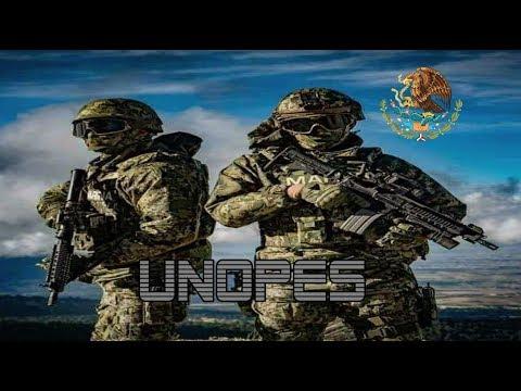 Operaciones Especiales (UNOPES) dela Infantería de Marina