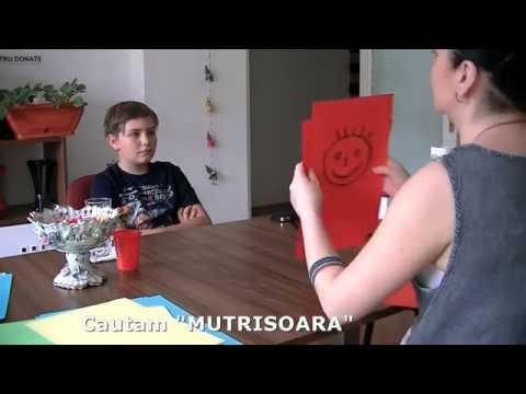 Vedere Intuitiva - Modul 2 - cautam mutrisoara