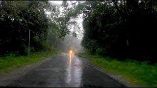 Rainy And Cloudy short Nature Tour.