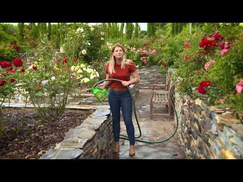 The Garden Gurus - Growing Roses