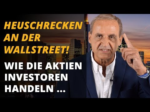 Heuschrecken an der Wallstreet - Wie die Aktien-Investoren handeln ... | Florian Homm