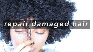 Repair & Restore Dry Damaged Hair    Healthy Hair Care
