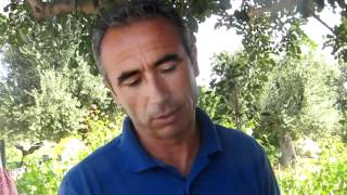 Masseria Torre Maizza: Gardening Tip - How to plant aromatic kitchen herbs