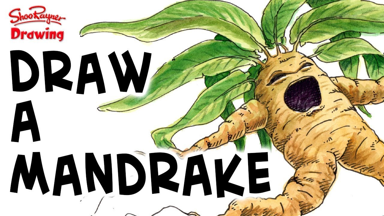 How To Draw A Screaming Mandrake Harry Potter Youtube
