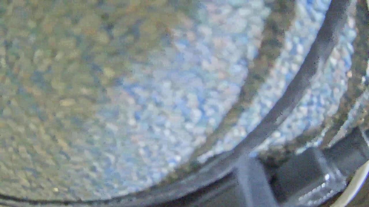 Skyline Bear Valley Live Base Cam - YouTube