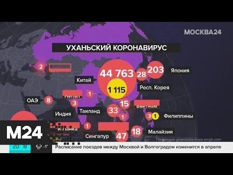 Число заразившихся коронавирусом приблизилось к 45 тысяч человек - Москва 24