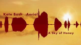 "Kate Bush  ""Aerial "" A Sky Of Honey CD2/2 Full Album HD"