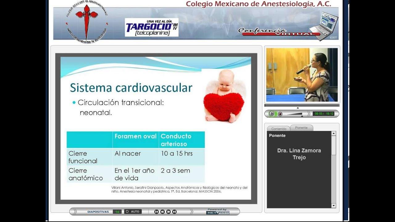 COMEXANE- Junio 2010 - Diferencias Anatómicas y Fisiológicas entre ...