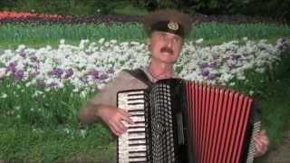 Когда весна придёт не знаю - аккордеон - A Russian love song(Когда весна придёт не знаю