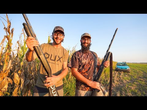 Dove Hunting Limit Out Challenge!!
