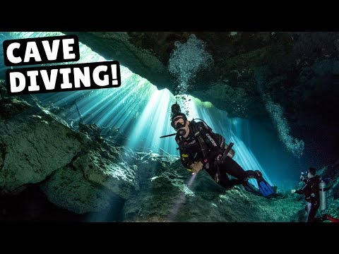 Video Of The Week | CENOTE DIVING IN MEXICO! (Coolest Thing We've Ever Done)