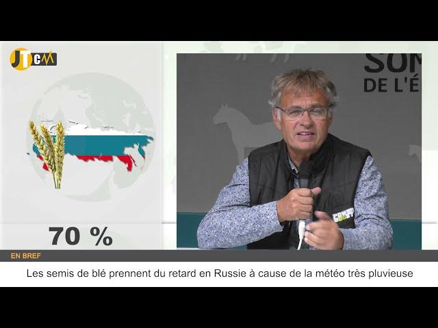 Les semis de blé prennent du retard en Russie