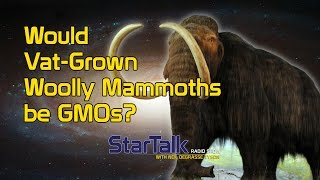 Would Vat-Grown Woolly Mammoths be GMOs?