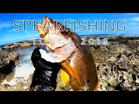 Spearfishing Tonga 2018
