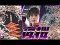 【目指せ夜桜マスター】夜桜の簡単な撮影方法!夜景と組み合わせるコツ!【目指せ37階】