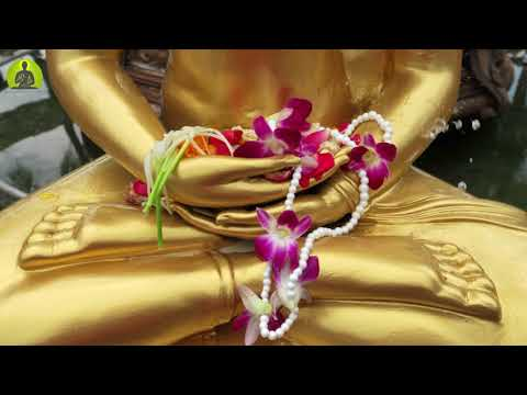 Deep Meditation Music Relax Mind Body l Inner Peace Music l Calming Peaceful Meditation