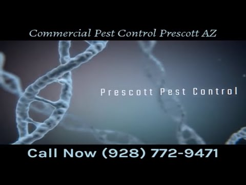 Commercial Pest Control Prescott AZ
