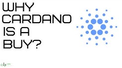Cardano (ADA) Crash Price Prediction - The Latest