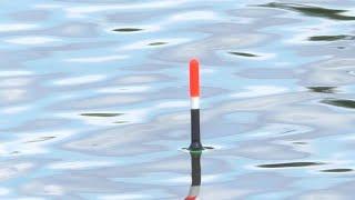 Поклёвки Крупным Планом Ложит поплавок Рыбалка на Карася