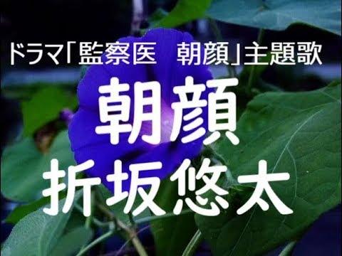 朝顔 主題 歌 歌詞 【フル歌詞】朝顔 / 折坂悠太【ピアノ弾き語り】『監察医