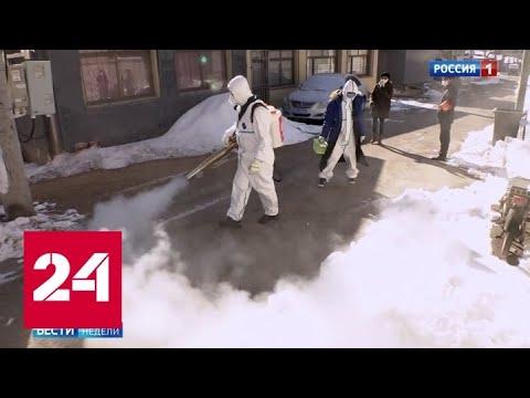 """Охотники за привидениями"" объявили войну вирусу - Россия 24"