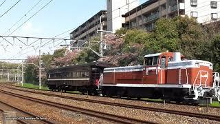 JR西日本 マイテ49形2号返却回送を山崎サントリーカーブで撮影(H30.4.3)