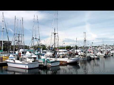 SEATTLE HD SHIP CANAL - SALMON BAY AFTERNOON