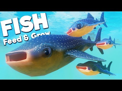 RAISING MY ADORABLE WHALE SHARK BABIES! | Feed And Grow Fish