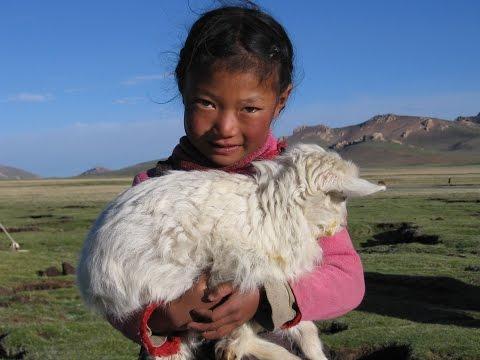 Tibetan nomads 2005