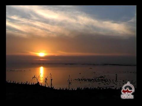 Lake Aydar. Fishing and birdwatching in Uzbekistan.