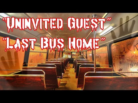 last bus home Retiree's last bus ride home leads to sweet surprise at last stop.