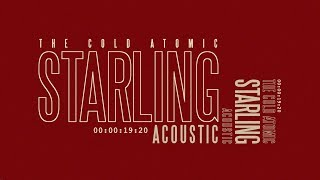 The Cold Atomic - Starling [acoustic]