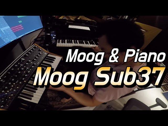 MOOG Subsequent 37 & Yamaha C7 Piano