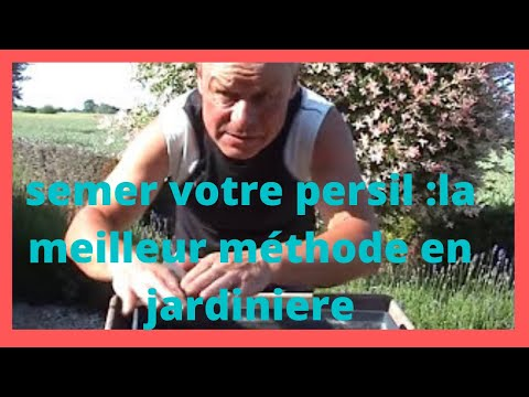 Semer Du Persil En Jardiniere Savoureux Youtube