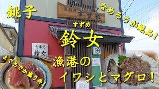 銚子【鈴女】のいわしなめろうとまぐろでか盛り丼 Japanese Seafood Restaurant SUZUME in Choshi.【飯動画】