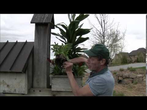 Gardening in the Northwoods!