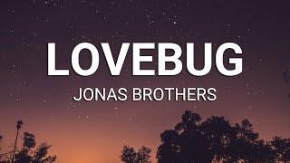 Jonas Brothers - Lovebug (Lyrics)