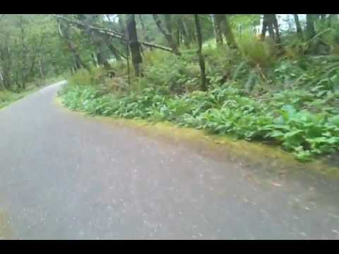 Evergreen Parkway Trail