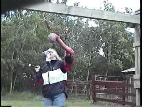 Staggette Beating on a cock peniatta.wmv