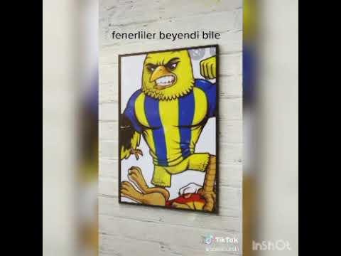 Tik Tok Fenerbahçe Videoları