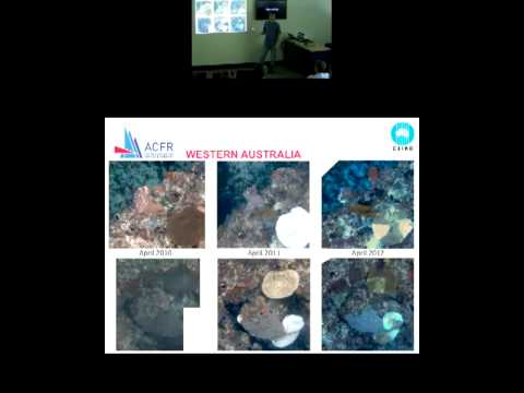 Stefan Williams - High-resolution benthic survey using Auton