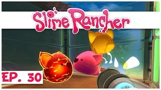 Welcome to slime rancher! in part 30 of our rancher series, we turn all tabby into largo hybrids so can vote on them! ► watch the entire s...