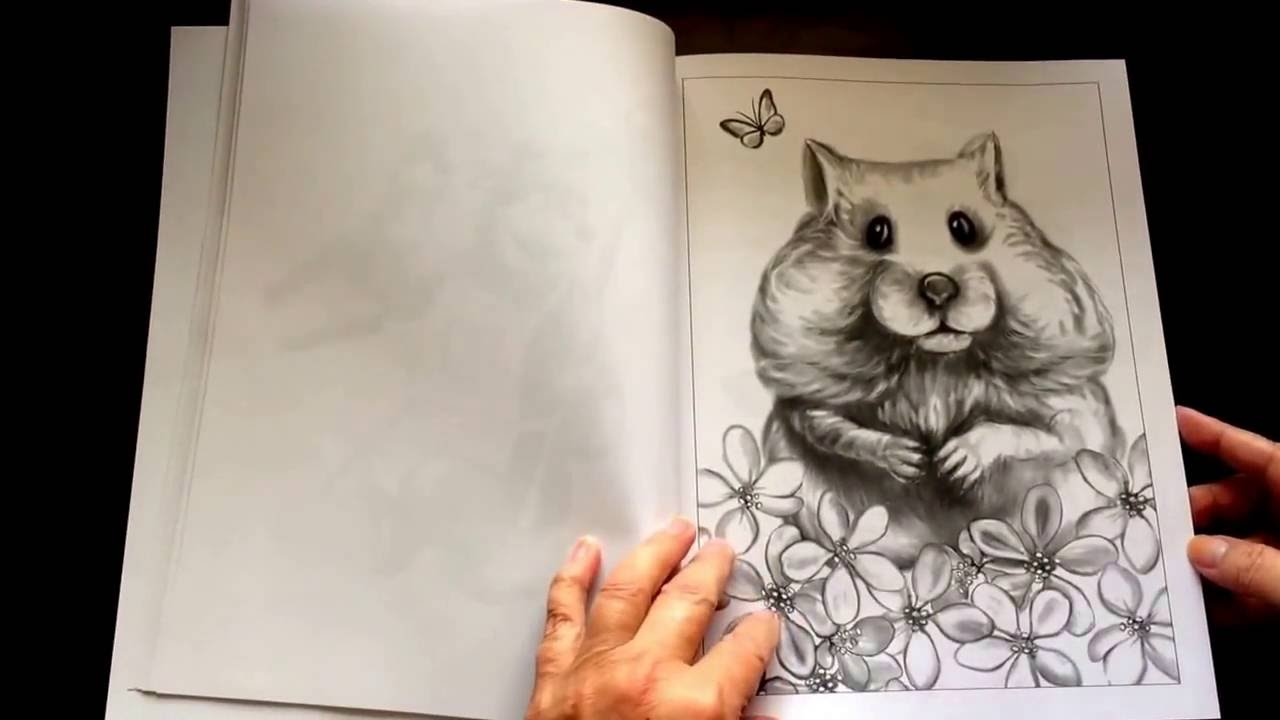 Funny animals coloring book by Adult Coloring Book Reviews by Shelly