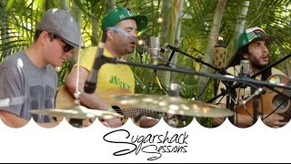Sugarshack Sessions | The Movement - Another Man