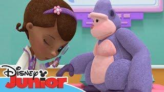 Dottoressa Peluche - Ospedale dei giocattoli - Il prurito di Gloria Gorilla - Dall'episodio 101